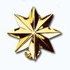 Кламерки метал. (Gwiazda KM7208) звезда золото